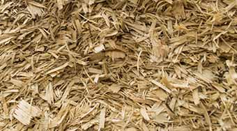Equine and Animal Bedding Shavings